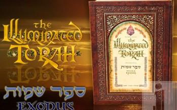 Soul Art: The Illuminations Of Rabbi Yonah Weinrib