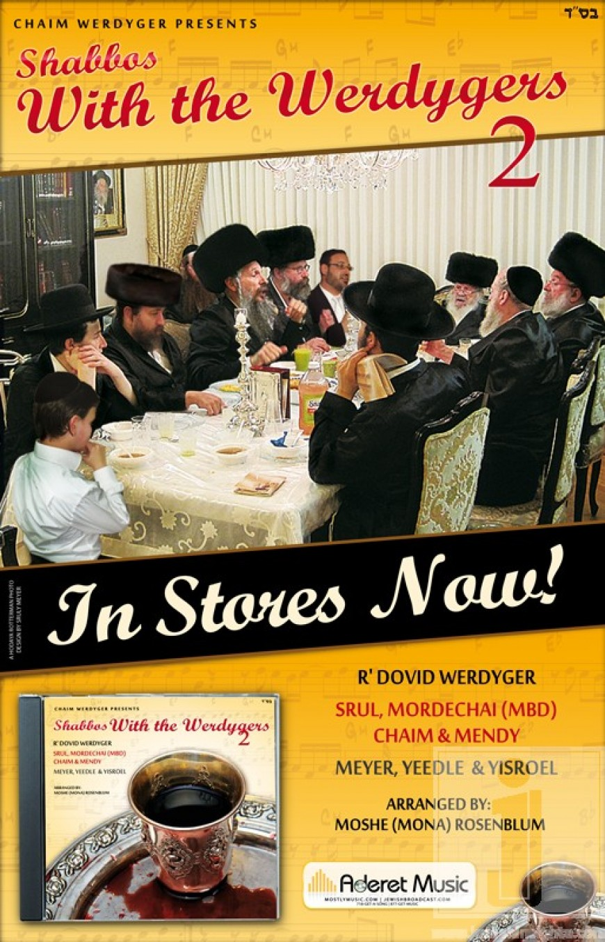 Now in Stores! Shabbos With the Werdygers 2
