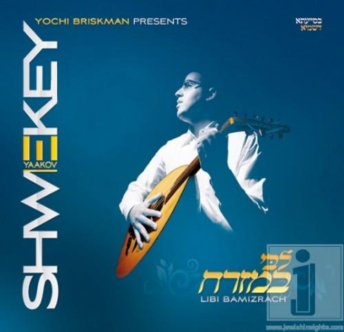 Shwekey-Libi
