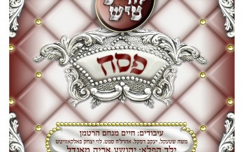 Lchaim Tish Pesach is almost here!