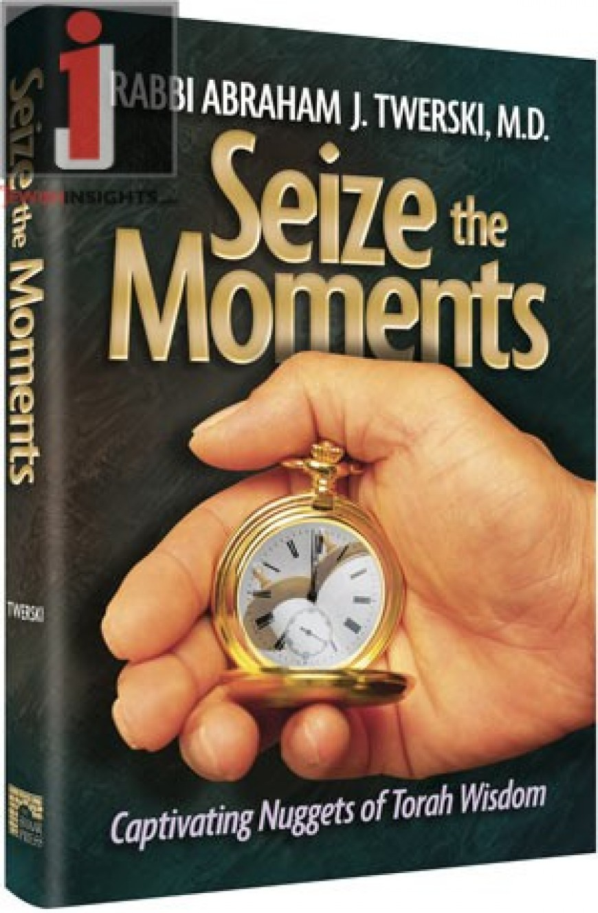 SEIZE THE MOMENTS: Captivating Nuggets of Torah Wisdom