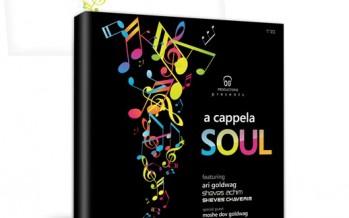 Ari Goldwag: A Cappela Soul Cover and Preview!