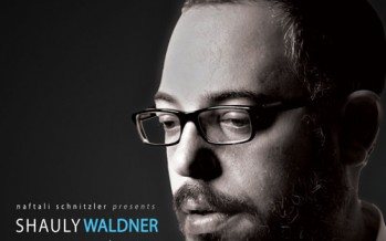 Nachum Segal Presents Shauly Waldner and his New CD Toiv Hashem