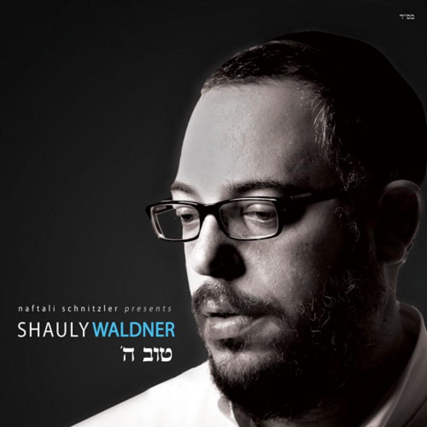 Nachum Segal Presents Shauly Waldner and his New CD Toiv Hashem