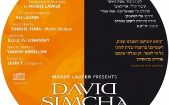 "David Simcha Releases His Debut Single ""Hein Goalti"""