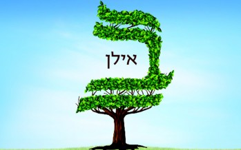 ILAN by Moshe Lax featuring Zevi Fried