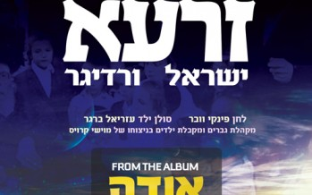 Yisroel Werdyger – Zaroh – Vocal Only Special For Seifrah