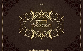 """Summer Music Season Opens With The New Single From Eli Hertzlich """"Chosson Domeh La'Melech"""""""