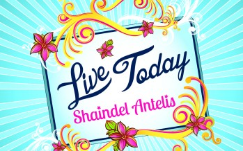 [FOR WOMEN & GIRLS ONLY!!] Shaindel Antelis – The Palace Official Music Video