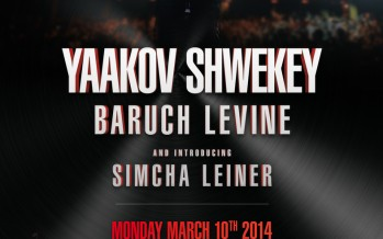 SHWEKEY SHOW IN BROOKLYN!