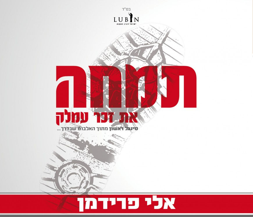 """Eli Friedman Returns With A New Single Special For Chodesh Adar: """"Timche!"""""""