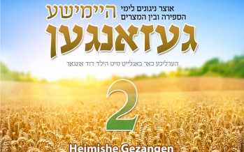 MRM Presents: Heimishe Gezangen 2