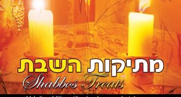 "R' Eliezer Kreisler Releases A New Album ""Metikut Ha'Shabbos"""