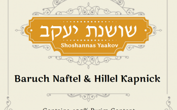 New Single from Hillel Kapnick & Baruch Naftel