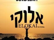 """Dovid Lowy Releases """"Elokai"""" Vocal Version Single For Sefira"""