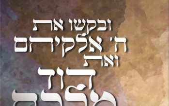 Baruch Wiesel & the Malchus Choir – V'es Dovid Malkom