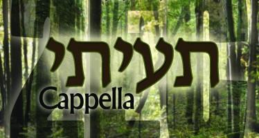 "Beri Weber Releases ""Tuisee"" Acapella"