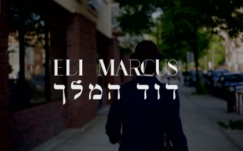 Eli Marcus – Dovid Hamelech [Official Music Video]