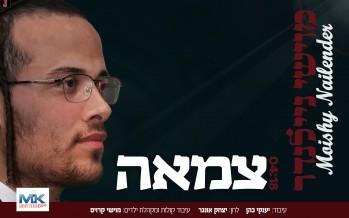 "Presenting: Moishy Nailender ""Tzamah"""