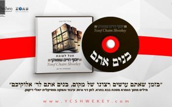 "Yosef Chaim Shwekey With A  New Single ""Bonim Atem"""