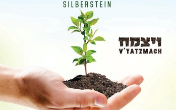 Tzvi Silberstein Releases Single off Upcoming Album