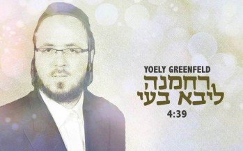 "Yoely Greenfeld Releases New Single From Upcoming Album ""Zeh"""