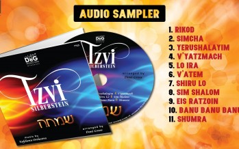 Tzvi Silberstein – SIMCHA [Audio Sampler]