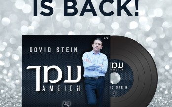 "Dovid Stein Releases New Single ""AMEICH"""