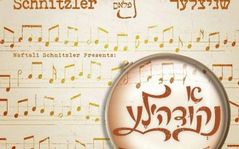 "Michoel Schnitzler Releases New Album ""A Nekidele"" In Stores Now!"