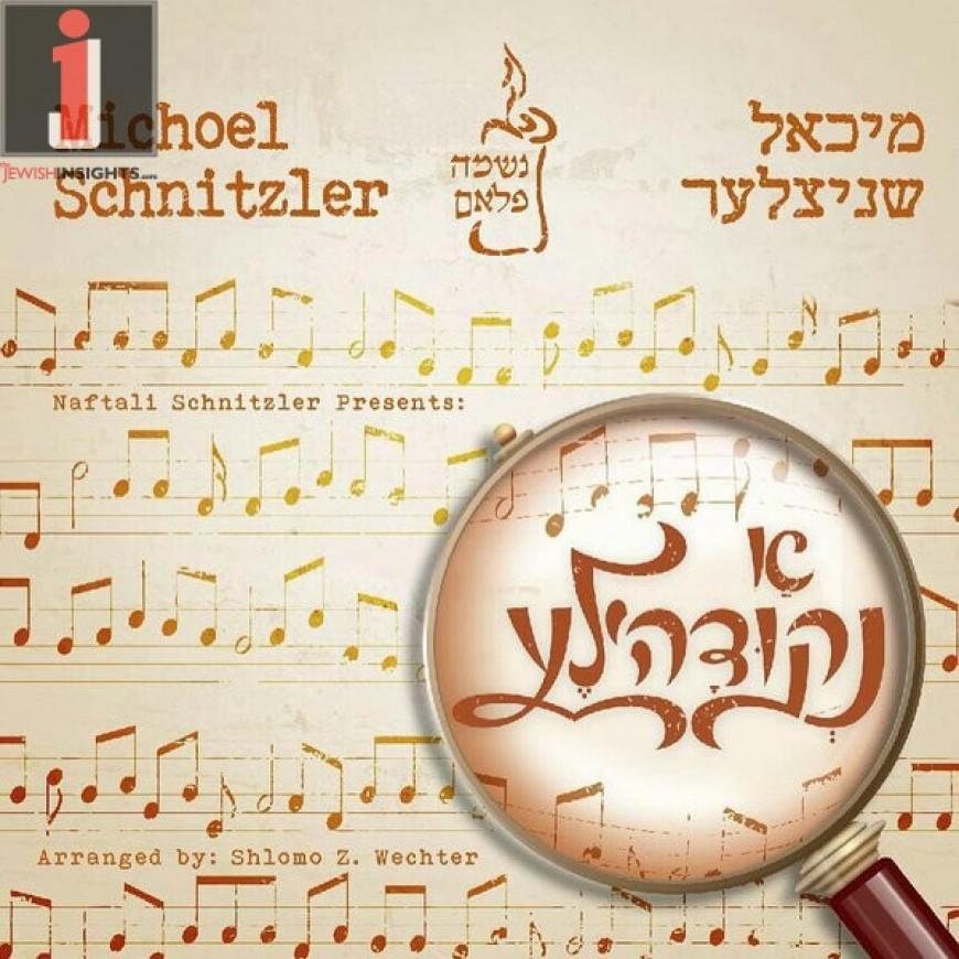 """Michoel Schnitzler Releases New Album """"A Nekidele"""" In Stores Now!"""