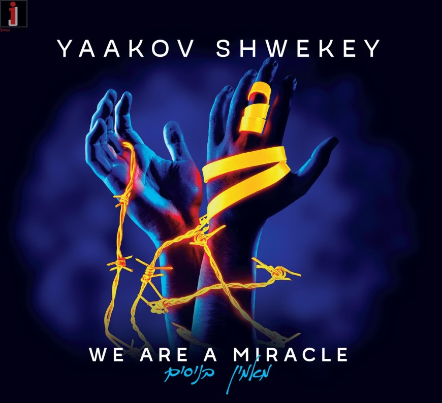 SHWEKEY | We Are A Miracle ♫ Audio Preview