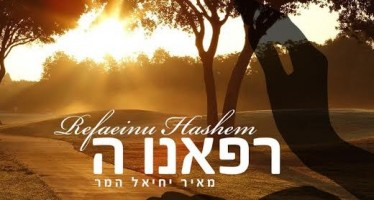 Meir Yechiel Hammer – Refaeinu Hashem