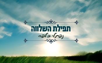 "Naftali Kalfa ""Serenity Prayer/Tfilat Hashalva"""