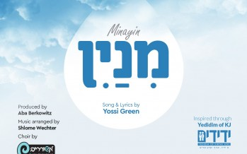 """Minayin"" – Hashem is a Yedid to All Cholei Yisroel"
