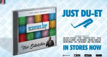 Tzvi Silberstein – Kol Hakochavim [Audio Sampler]