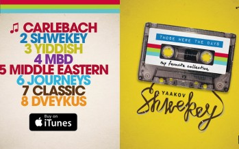 SHWEKEY | Those Were The Days ♫ Audio Preview