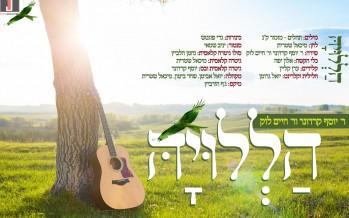 """""""Halleluyah"""" Yosef Karduner & Rabbi Chaim Louk"""