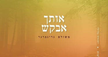 Oischa Avakesh – Meshulem Greenberer [Audio Preview]