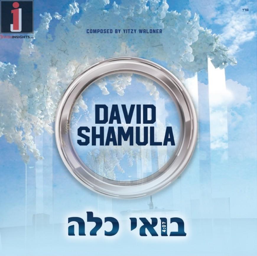 [DEBUT SINGLE] David Shamula – Boi Kalah – Composed by Yitzy Waldner