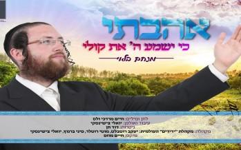 Menachem Blau – Uhavti