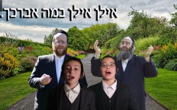 "Chaim Meir Fligman Presents: ""אילן"" ft. Achim Fligman, Shulem Saal, Moshe Glick"