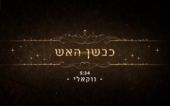 "Singer Avremy Goldstein Releases ""Kivshan Ha'Eish"" Vocal Version"