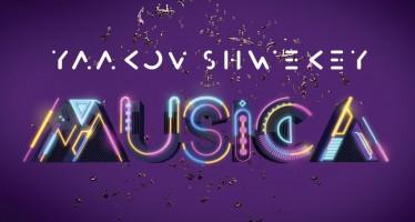 SHWEKEY – MUSICA [AUDIO PREVIEW]