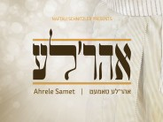 The Summer Is Here & With It Comes The Hottest Project In The Past Decade: Ahreleh!