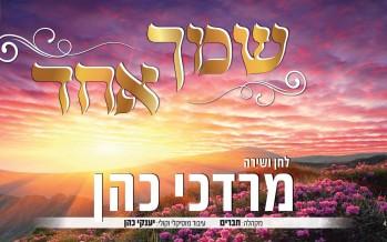 "Mordechai Cohen Returns In A  Big Way, & Not Alone ""Shemcha Echad"""