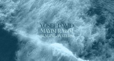Yosef David – Mayim Rabim (Raging Waters) [Audio]
