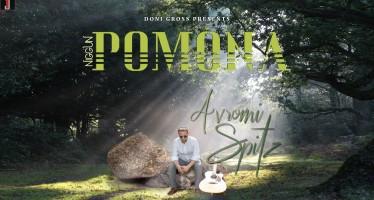 Avromi Spitz – Niggun Pomona