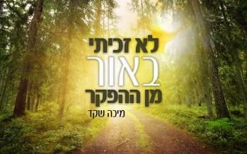 Micha Shaked In A Israeli Piyut: Lo Zachiti b'Or Min Ha'Hefker