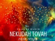 Yaakov Klein – Nekudah Tovah [Official Lyric Video]