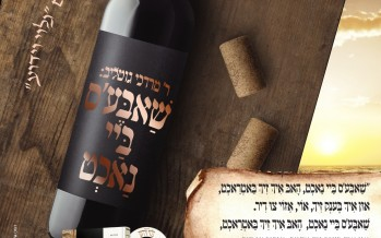 From The New Album of R' Mordechai Gottlieb: Shabbos Bei Nacht